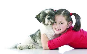 家长课堂:孩子想要养宠物,家长该支持吗?